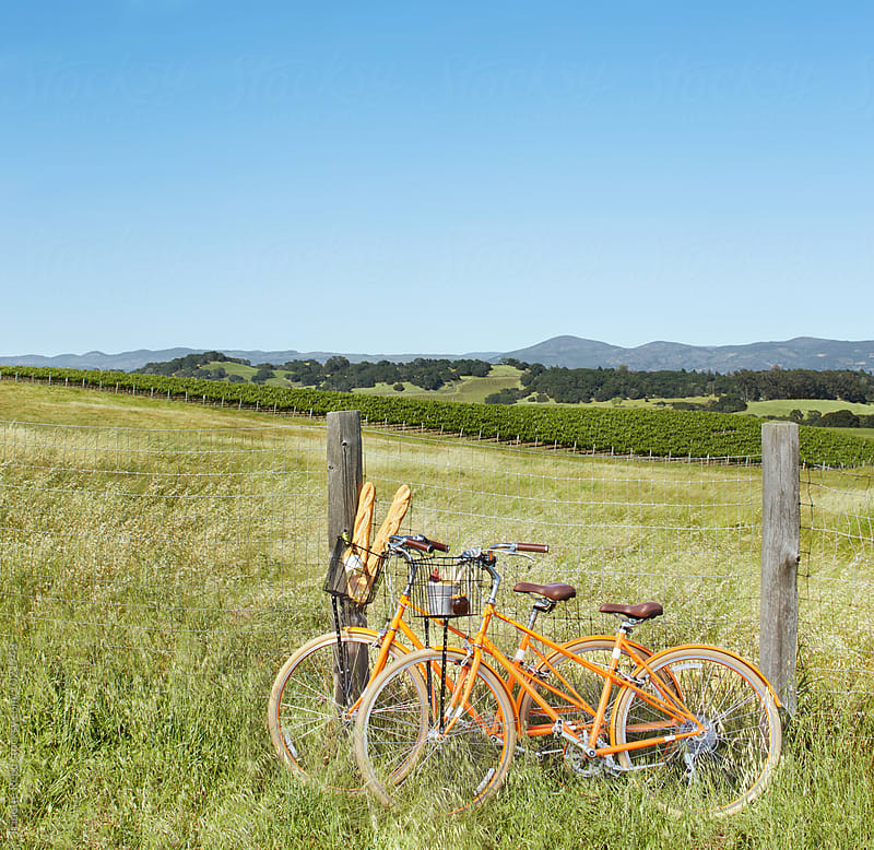 Bikes resting by fence and vineyards by Trinette Reed for Stocksy United