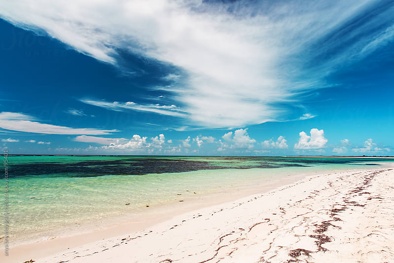 Sandy white beach with blue sky and green waters by anya brewley schultheiss for Stocksy United