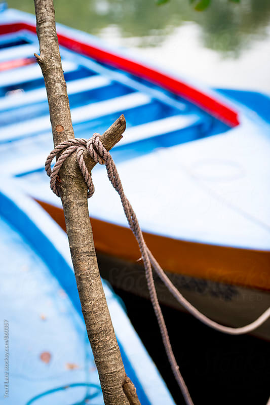 Fishing boats tied on tree trunk with rope by Trent Lanz for Stocksy United