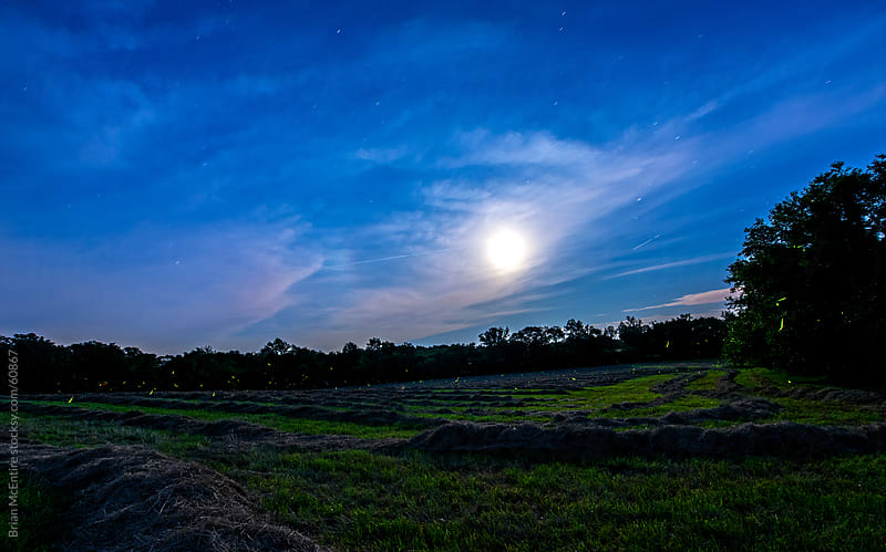 June 2013 Super Moon Rising Over Fresh Cut Hay Field with Fireflies by Brian McEntire for Stocksy United