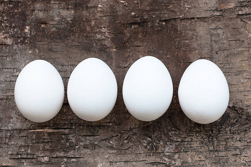 White shell eggs by Zocky for Stocksy United