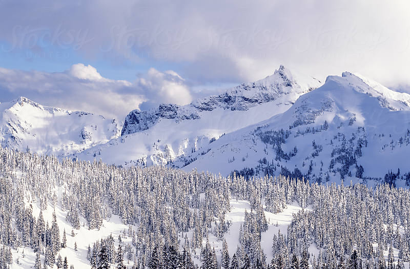 Tatoosh mountain range in winter by Mark Windom for Stocksy United