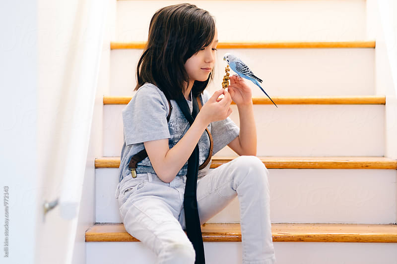 Young boy training his pet bird by kelli kim for Stocksy United