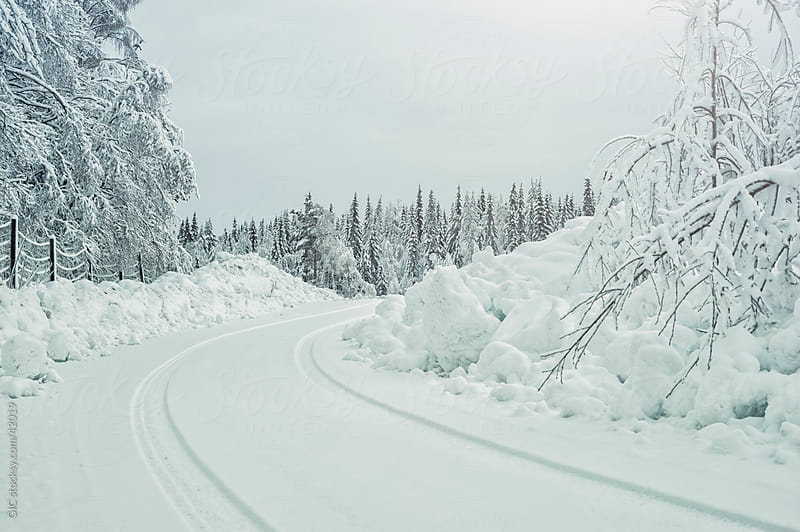 Winter landscape with a snow wrapped road by GIC for Stocksy United