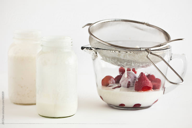 Making Kefir by Jill Chen for Stocksy United