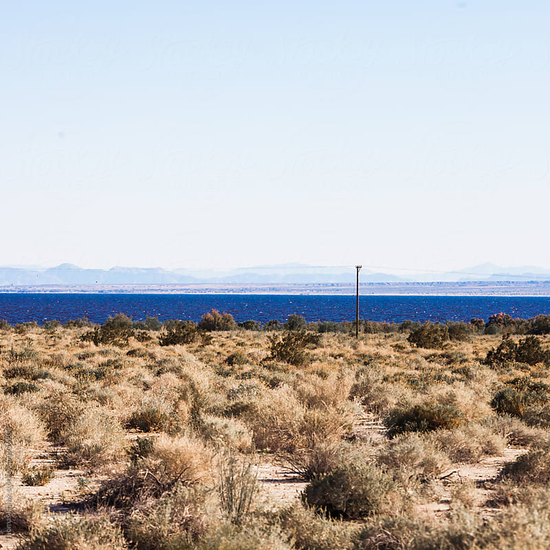 Salton Sea by Thomas Hawk for Stocksy United