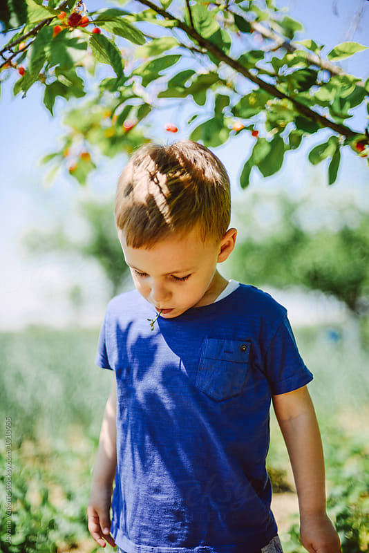 Boy  eats cherries by Jovana Vukotic for Stocksy United