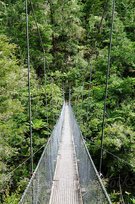 Swing bridge, Abel Tasman National Park, New Zealand. by Thomas Pickard for Stocksy United
