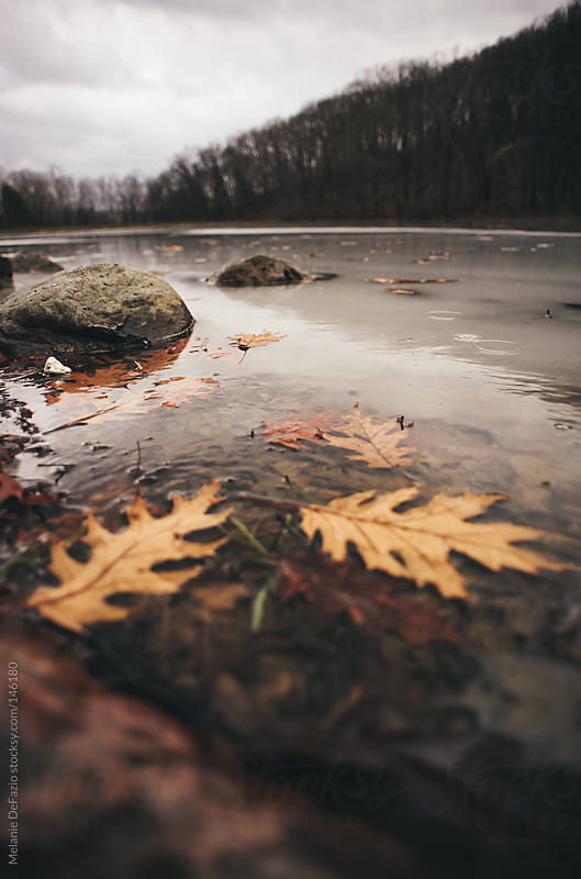Frozen Lake by Melanie DeFazio for Stocksy United