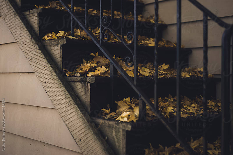 Fallen autumn leaves collect in small piles on an apartment staircase by Rachel Bellinsky for Stocksy United