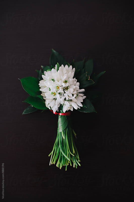 Bouquet of snowdrops  by VeaVea for Stocksy United