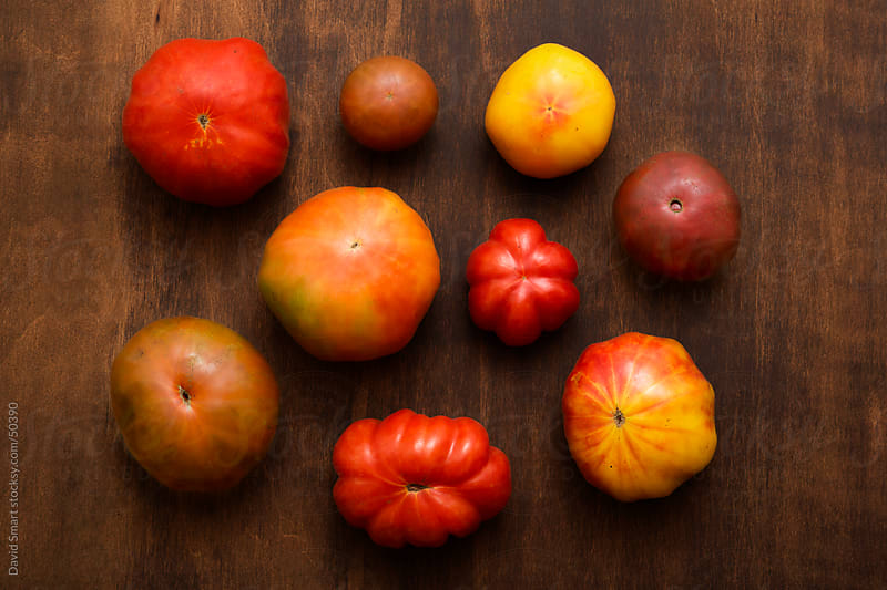 Assortment of heirloom tomatoes on dark wood background by David Smart for Stocksy United