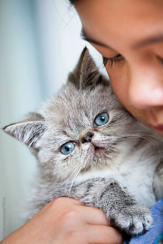 Girl and her Kitten by Jill Chen for Stocksy United