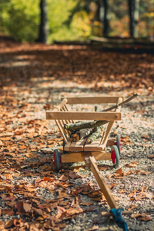 handcart with some wooden branches in an autumnal forest by Leander Nardin for Stocksy United