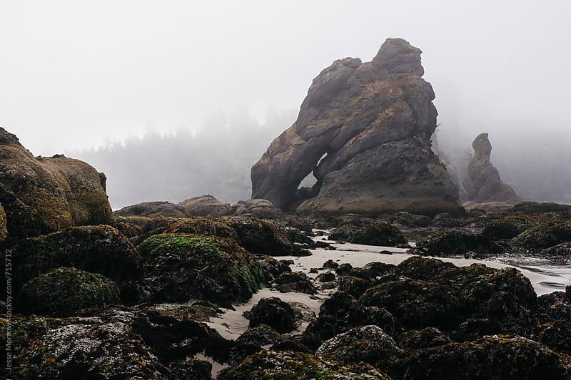 interesting landcape and rock formations shi shi beach washington usa by Jesse Morrow for Stocksy United