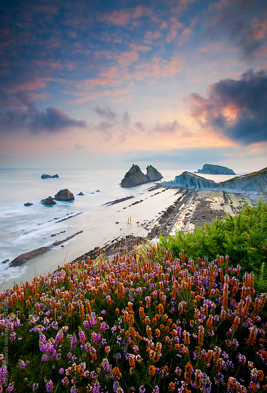 Sunrise from a cliff full of wildflowers by Marilar Irastorza for Stocksy United