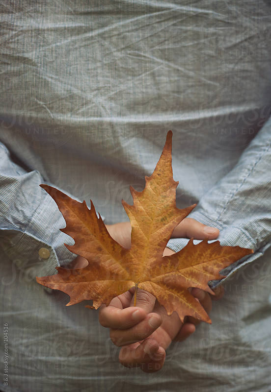 hands holding dead leaf by B & J for Stocksy United