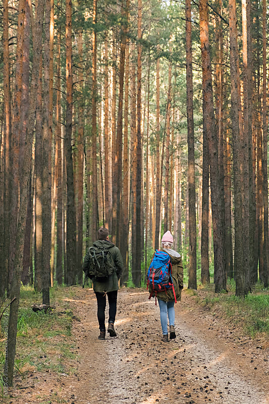 back view of young couple with backpacks walking in forest by Danil Nevsky for Stocksy United