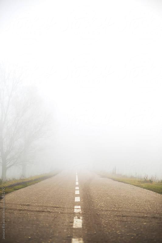 Foggy road by Jovana Rikalo for Stocksy United