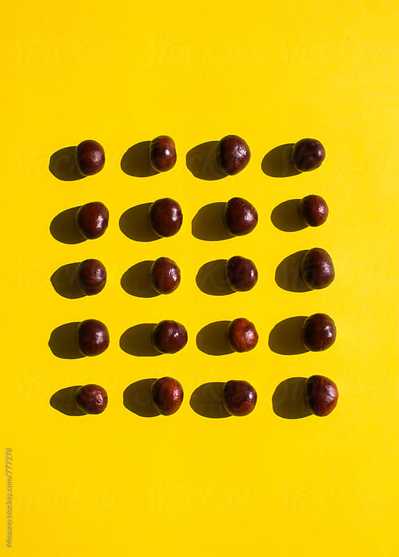Chestnuts on a Yellow Background by Mosuno for Stocksy United