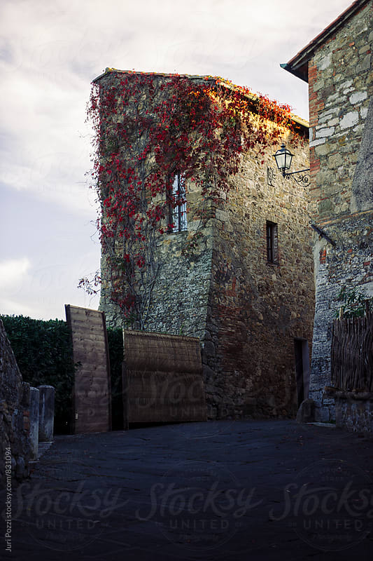 Old building with red ivy by Juri Pozzi for Stocksy United