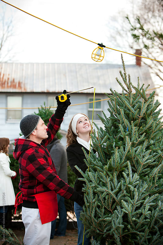 Tree Lot: Employee Measures Tree For Woman by Sean Locke for Stocksy United
