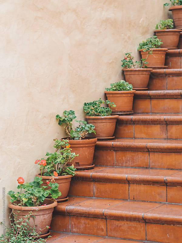Flower pots on the stairs by Milena Milani for Stocksy United