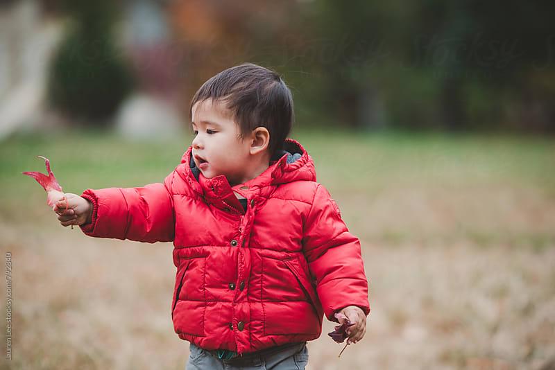 Little boy holding up leaf by Lauren Naefe for Stocksy United