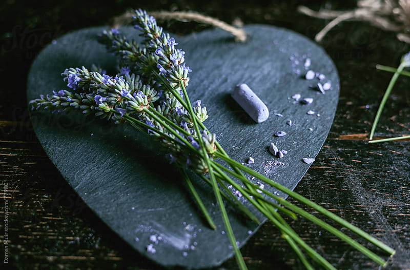 English lavender and slate. by Darren Muir for Stocksy United