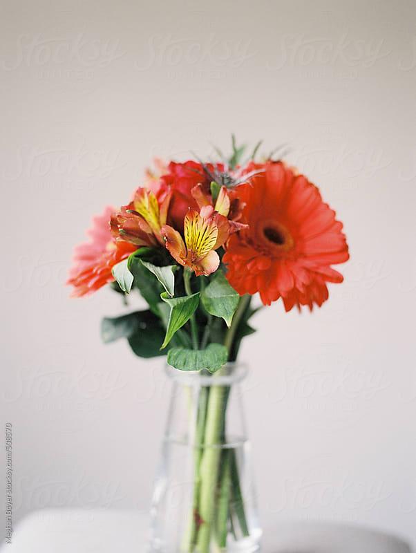 orange Gerber Daisy floral arrangement still life by Meghan Boyer for Stocksy United