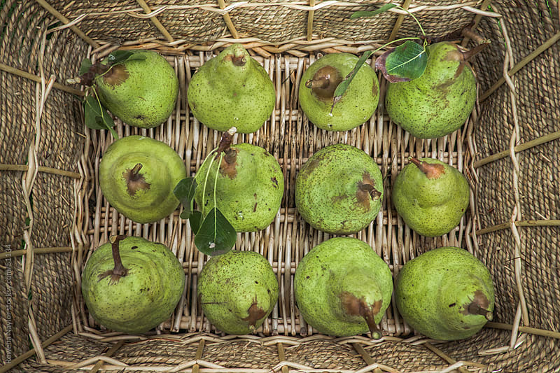 Organic Pears in Cane Basket by Rowena Naylor for Stocksy United