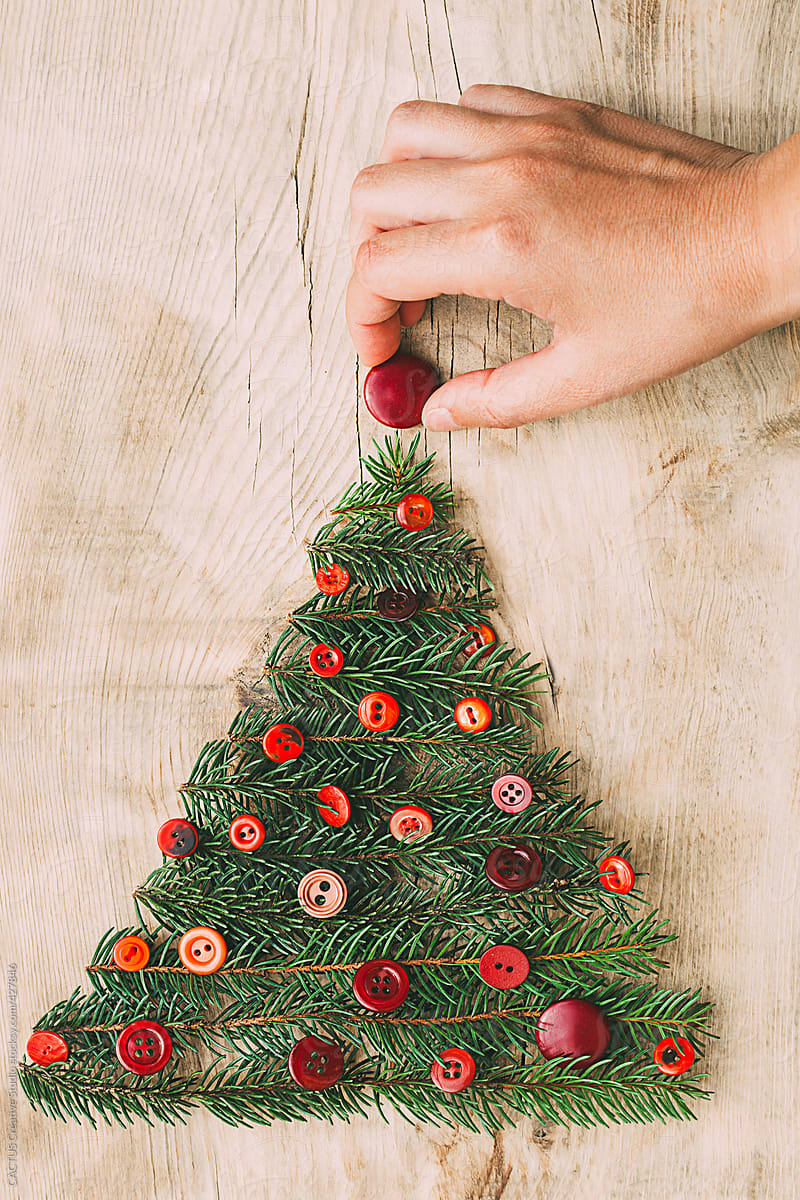 making a christmas tree by cactus blai baules for stocksy united