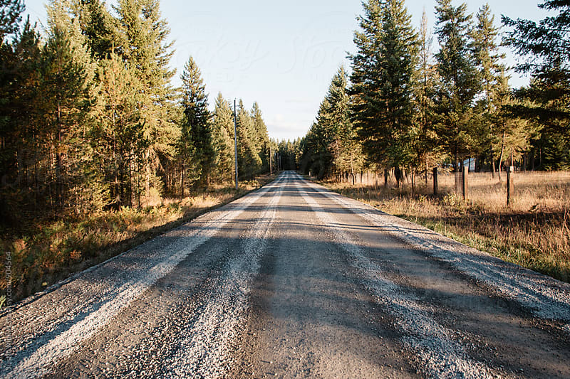 Straight gravel road in the country by Justin Mullet for Stocksy United