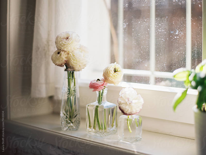 After the rain: colorful buttercups in glass vases on windowsill, window dirty with rain by Laura Stolfi for Stocksy United