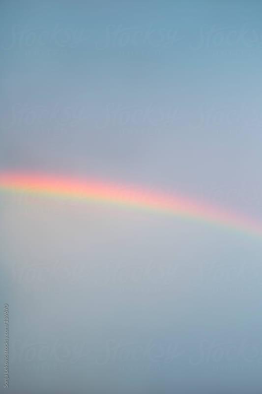 rainbow by Sonja Lekovic for Stocksy United