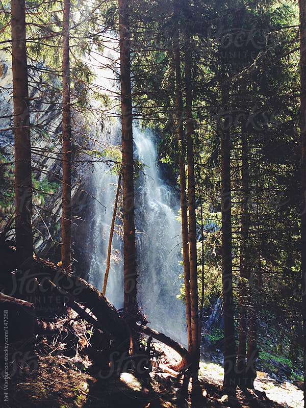 Forest Waterfall by Neil Warburton for Stocksy United