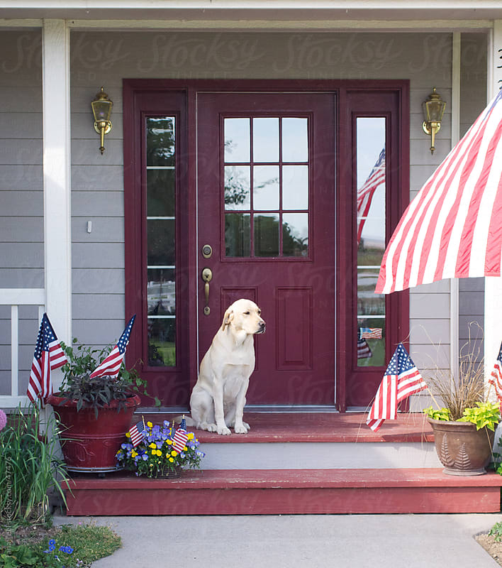 Golden lab sitting on porch decorated for 4th of July by Tana Teel for Stocksy United