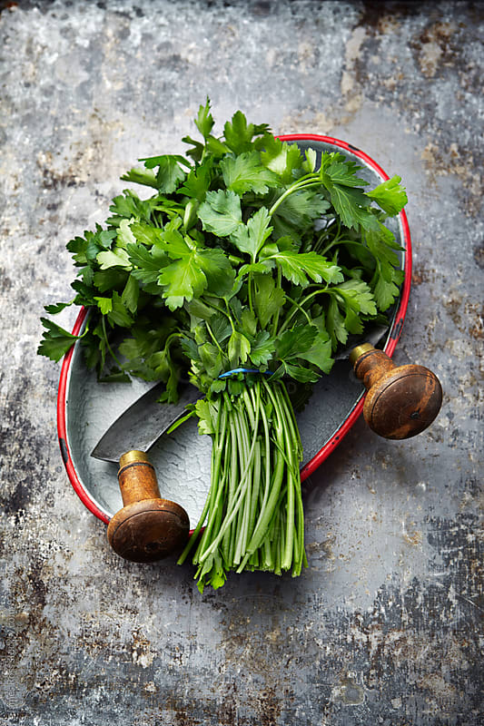 Parsley with a herb knife by James Ross for Stocksy United