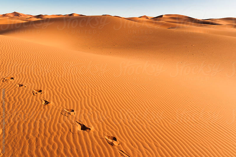 Footprints in the Sahara Desert by Good Vibrations Images for Stocksy United