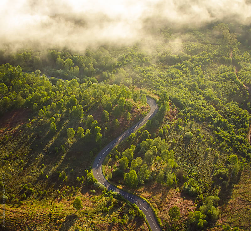 A remote and narrow road winding through natural forest and into early morning misty clouds. by Andy Campbell for Stocksy United