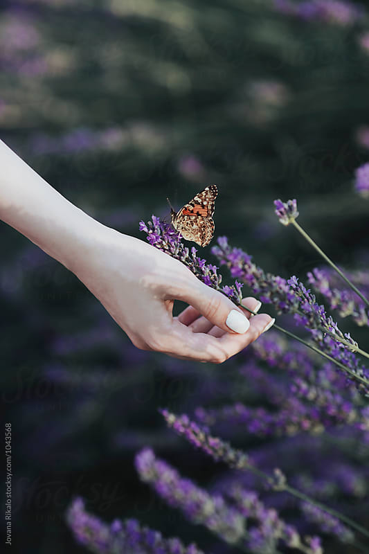 Butterfly and a girl's hand by Jovana Rikalo for Stocksy United