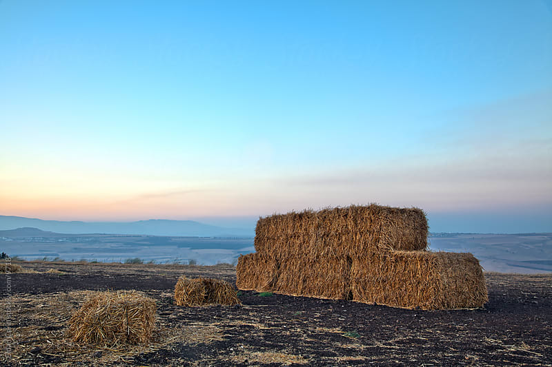 Bales of Hay at Galilee Plains - Dusk by Eldad Carin for Stocksy United