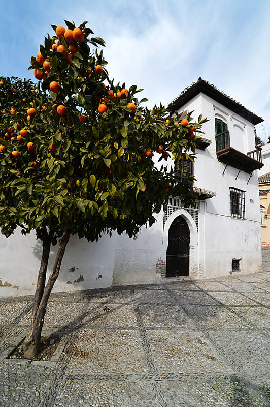 A typical house in the neighborhood of Realejo in Granada with an orange tree by Bisual Studio for Stocksy United