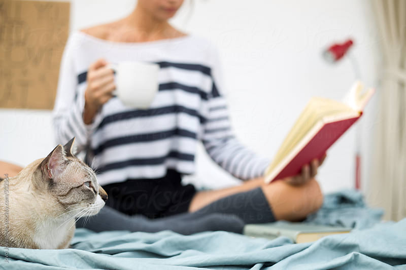Woman reading book with a cat beside her by Jovo Jovanovic for Stocksy United