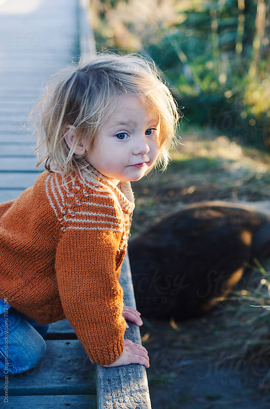 Little girl looking at fur seal pups by Dominique Chapman for Stocksy United