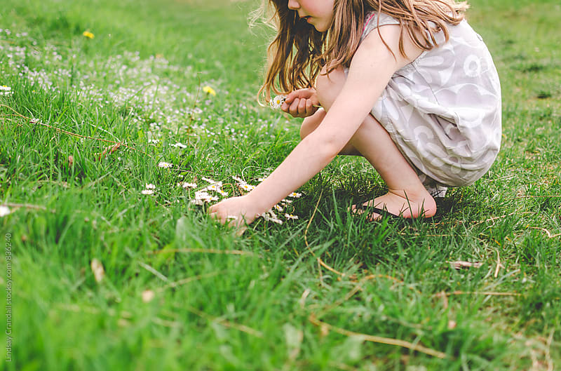 Child picking flowers by Lindsay Crandall for Stocksy United