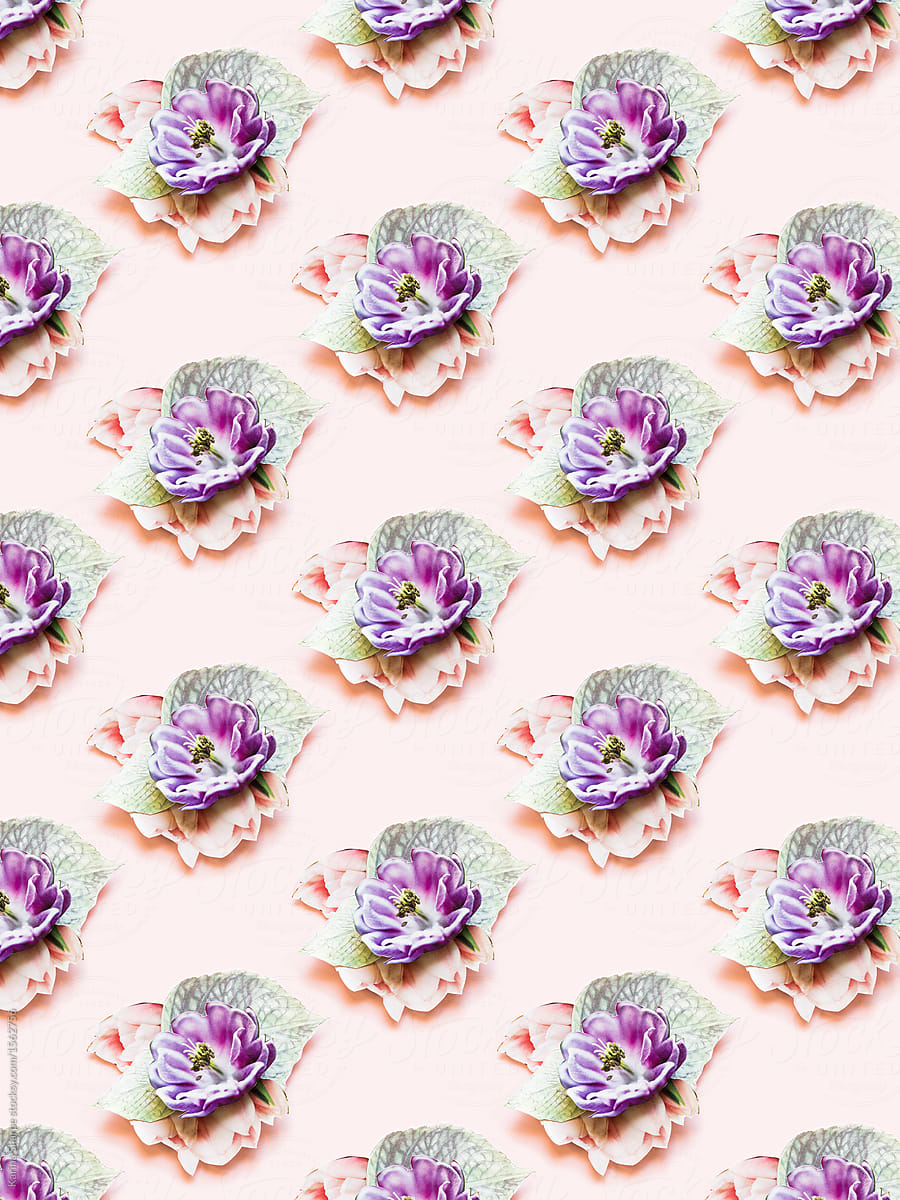 Paper Flower Pattern Stocksy United