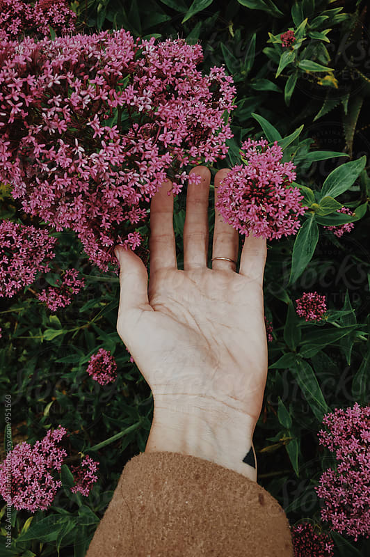 hand and flowers by Nate & Amanda Howard for Stocksy United
