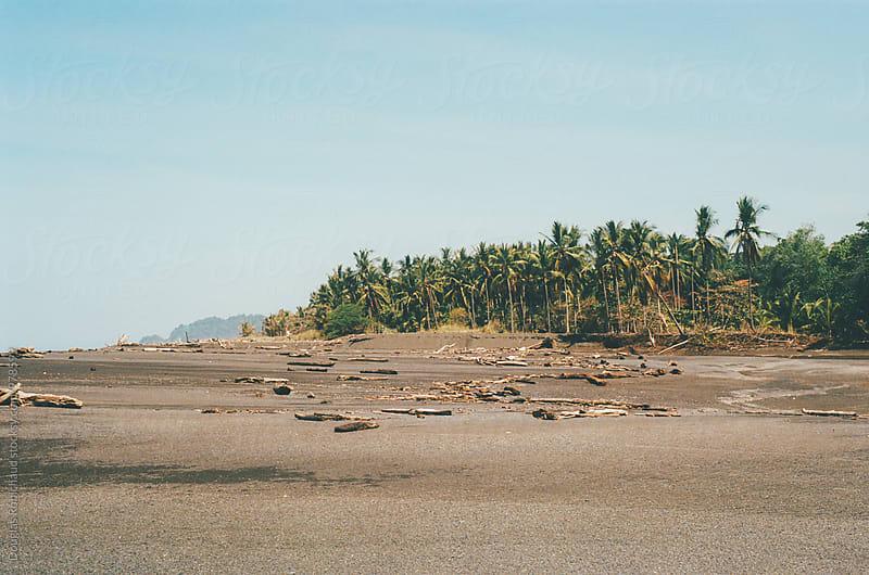 Tropical beach by Douglas Robichaud for Stocksy United