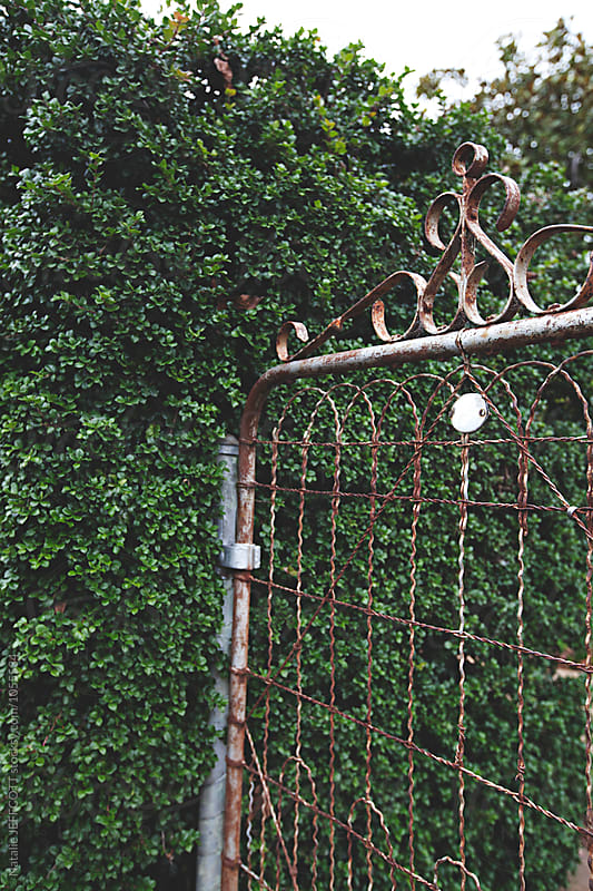 Old gate with number and hedge by Natalie JEFFCOTT for Stocksy United